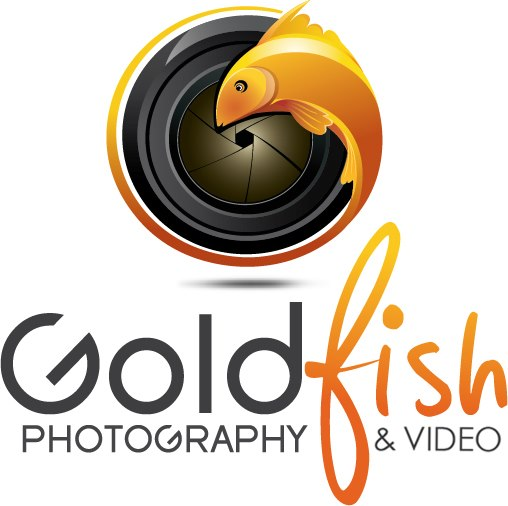 Goldfish Photography and Video